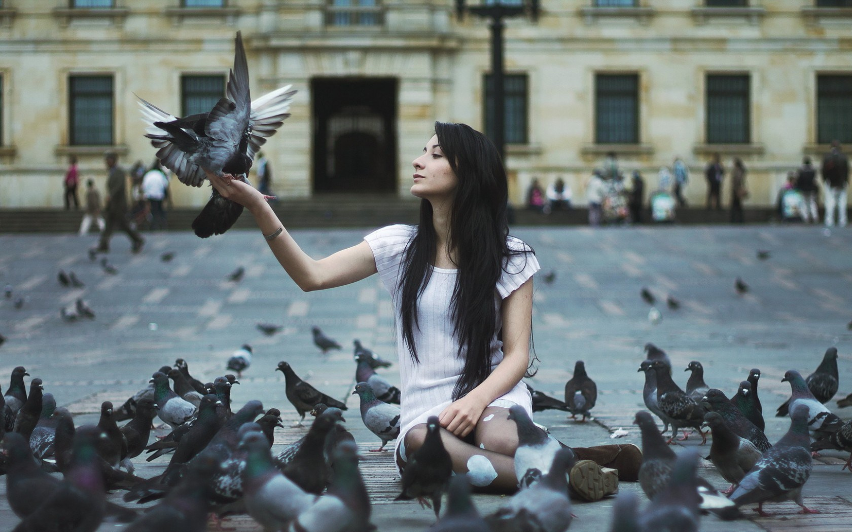 Девушка и голуби картинка